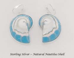 Fabulous Blue Nautilus Shell Clip On Earrings in Sterling Silver