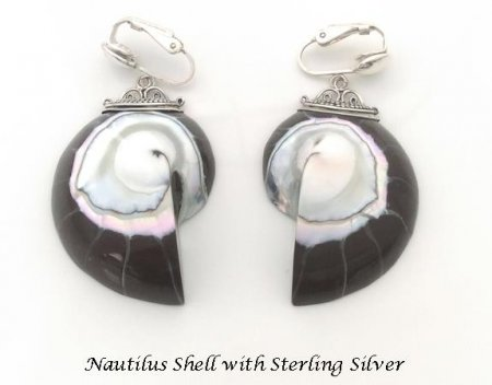 Clip On Earrings, Nautilus Shell, Sterling Silver, Artisan Made